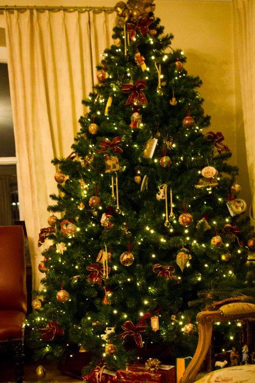 Kerstfeest25-12-2012108