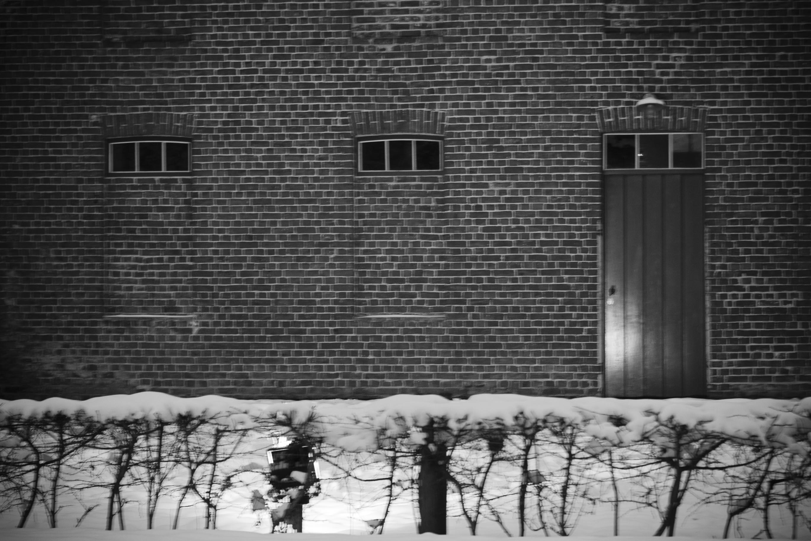 Sterrebos 19-01-2013-2-3