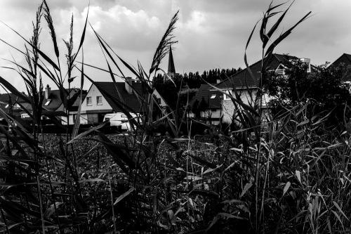 20130820_Nieuwpoort_MG_4956