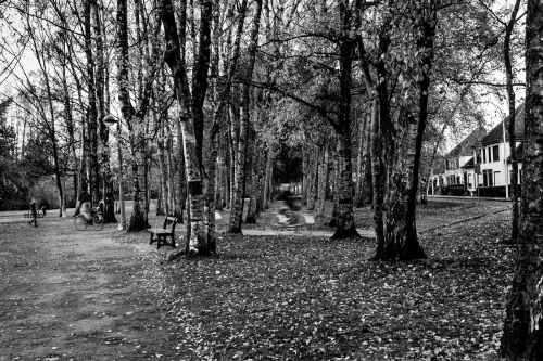 20131208_Kortrijk__MG_0189