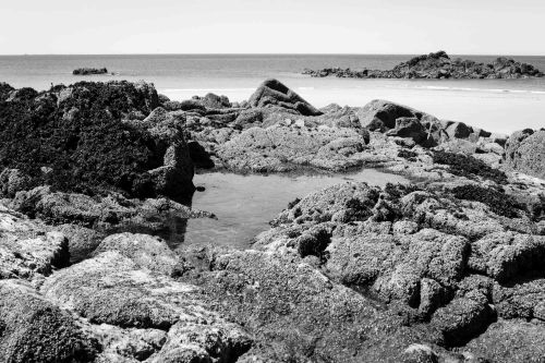 20140702_Bretagne__MG_0425-2