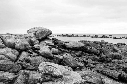 20140704_Bretagne__MG_0540-2