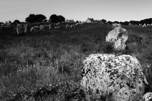 20140708_Bretagne__MG_0786-2