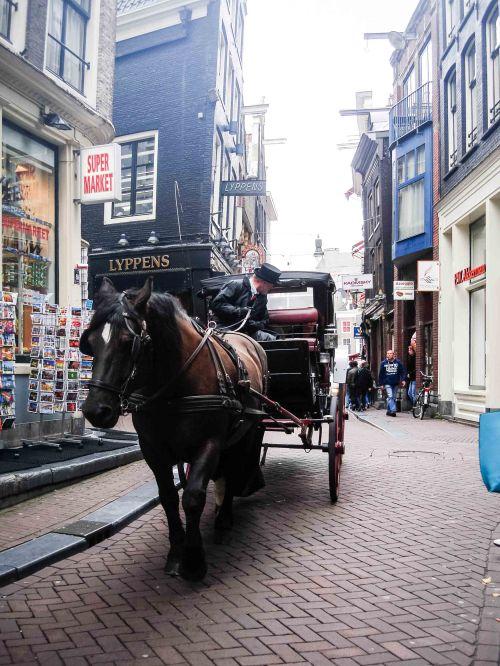 20140826_Amsterdam_DSC00005