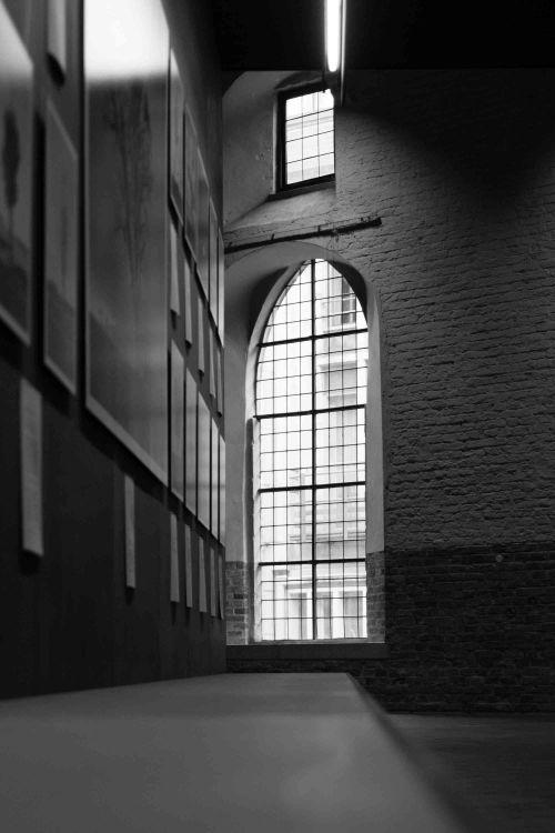 20141025_Brugge__MG_3562