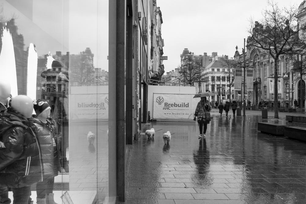 20150118_Antwerpen__MG_4208