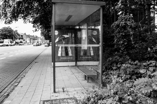 20150620_Roeselare__MG_6983