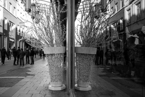 20151209_Brussel__MG_8208