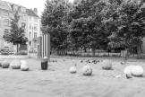 20190616_Brussel__MG_4704